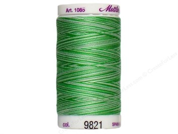 Mettler Thread Color 9821
