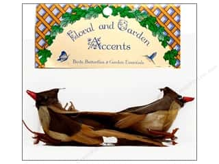 decorative floral: Accent Design Artificial Bird 4 1/4 in. Cardinal Brown/Tan/Natural Feather 2 pc.