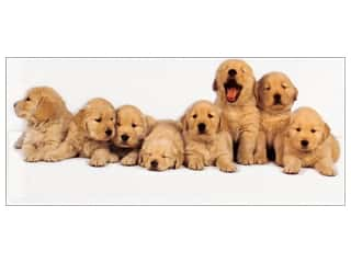 novelties: Paper House Diecut Blank Card Golden Retriever Puppies