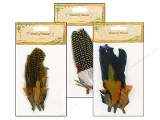 Feathers: Midwest Design Feather Pick Guinea Assorted 3pc