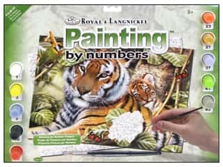 Clearance Royal Paint Artist Acrylic: Royal Paint By Number Kit Large In The Shadows