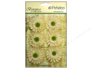 Clearance: Petaloo Botanica Collection Gerber Daisy Ivory