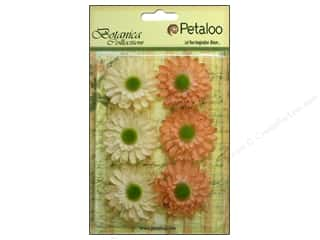 Clearance: Petaloo Botanica Collection Gerber Daisy Peach