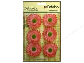 Petaloo Botanica Collection Gerber Daisy Coral