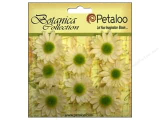 Clearance: Petaloo Botanica Collection Gerber Daisy Mini Ivory
