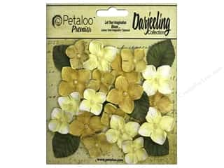 Petaloo Darjeeling Hydrangeas Yellow