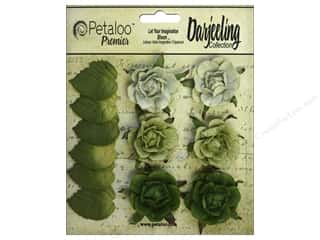 leaves: Petaloo Darjeeling Garden Rosette Green
