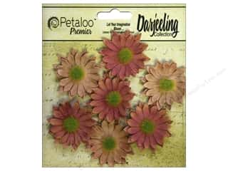 leaves: Petaloo Darjeeling Daisy Mini Spice