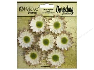 leaves: Petaloo Darjeeling Daisy Mini Cream