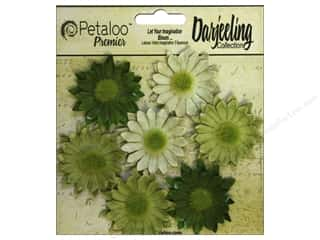 Petaloo Darjeeling Daisy Mini Green