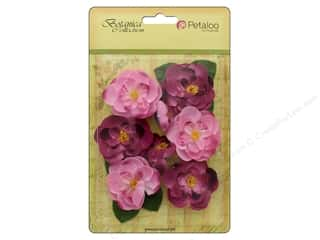 Petaloo Botanica Collection Ranunculus Fuchsia