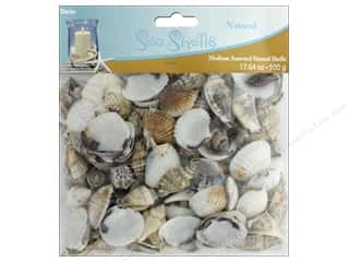 floral & garden: Darice Seashells Medium Assorted 17.64 oz