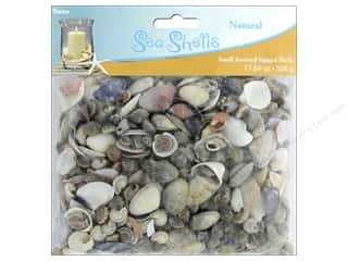 decorative floral: Darice Decor Seashells Small Assorted 17.64 oz