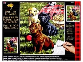 "Plaid Paint By Number 16""x 20"" Puppy Picnic"