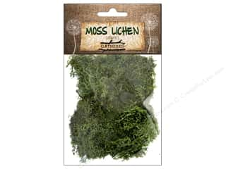 moss: BCI Crafts Moss/Lichen 1 oz Dark Green