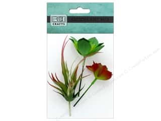 craft & hobbies: BCI Crafts Succulent Mix B 3 pc