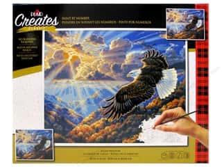 craft & hobbies: Plaid Paint By Number 20 in. x 16 in. Eagle Freedom