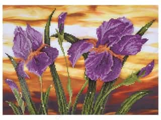 Diamond Dotz Intermediate Kit - Iris Sunset