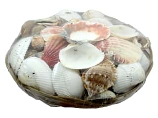 decorative floral: Darice Floral Seashells Pack 6 in. Cocomidrib Basket