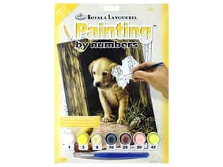 craft & hobbies: Royal Paint By Number Junior Small Labrador Puppy