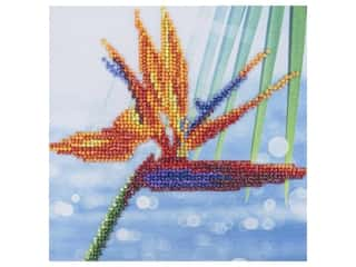 Diamond Art Kit 8 in. x 8 in. Beginner Bird Of Paradise
