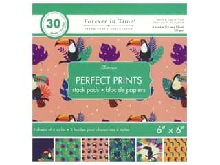 patterned paper : Multicraft Stack Pad 6 in. x 6 in. Toucan