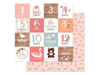 scrapbooking & paper crafts: Echo Park Baby Girl Collection Paper 12 in. x 12 in. Milestone Cards (25 pieces)