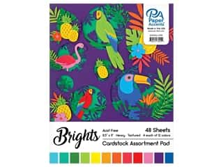 Paper Accents 8 1/2 x 11 in. Cardstock Pad 48 pc. Bright