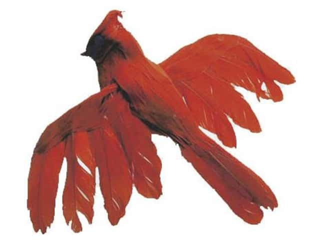 Accent Design Artificial Bird 5 1/2 in. Cardinal Red/Black Feather 1 pc.