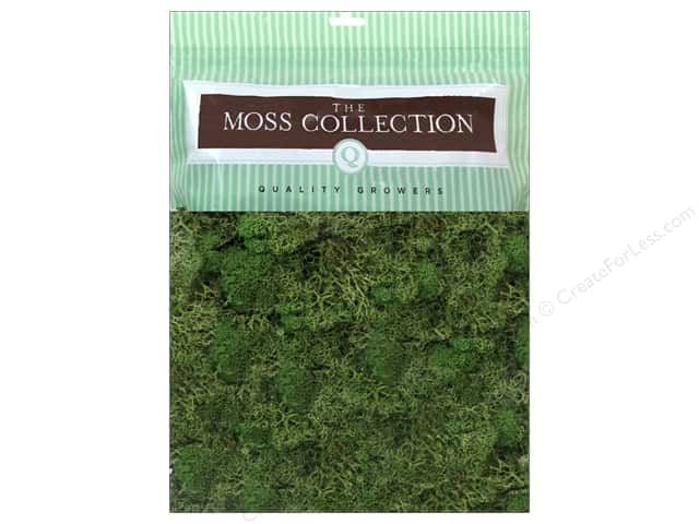 Quality Growers Moss Reindeer Basil 108.5 cu in