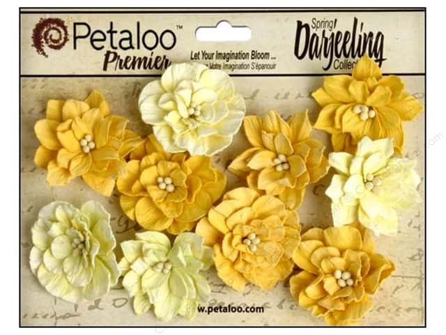Petaloo Darjeeling Dahlias Teastain Yellow