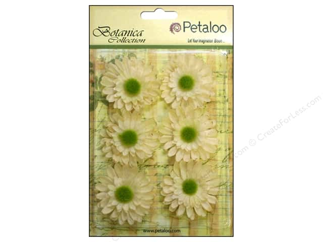 Petaloo Botanica Collection Gerber Daisy Ivory