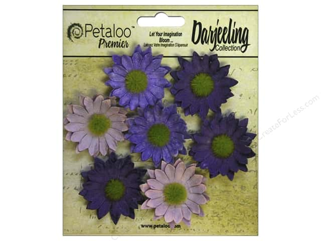 Petaloo Darjeeling Daisy Mini Purple