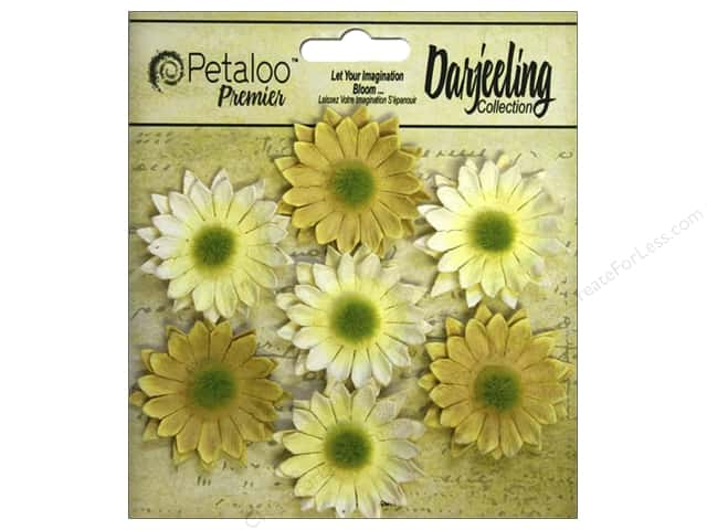 Petaloo Darjeeling Daisy Mini Yellow