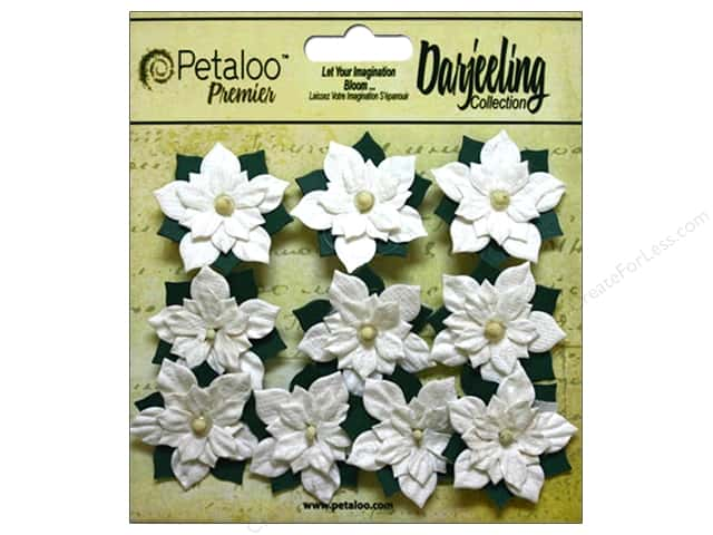 Petaloo Darjeeling Holiday Poinsettias Mini White