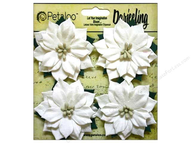 Petaloo Darjeeling Holiday Poinsettias Medium White