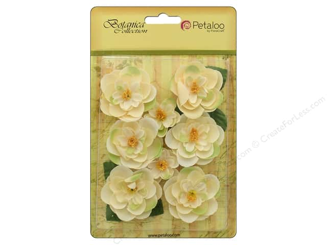 Petaloo Botanica Collection Ranunculus Ivory