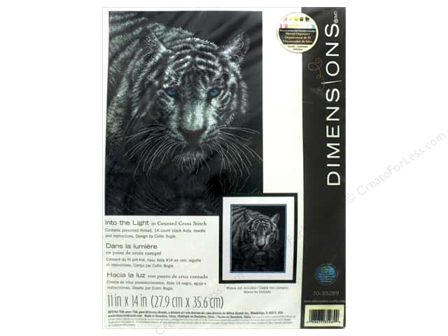 "Dimensions Cross Stitch Kit 11""x 14"" Into The Light"