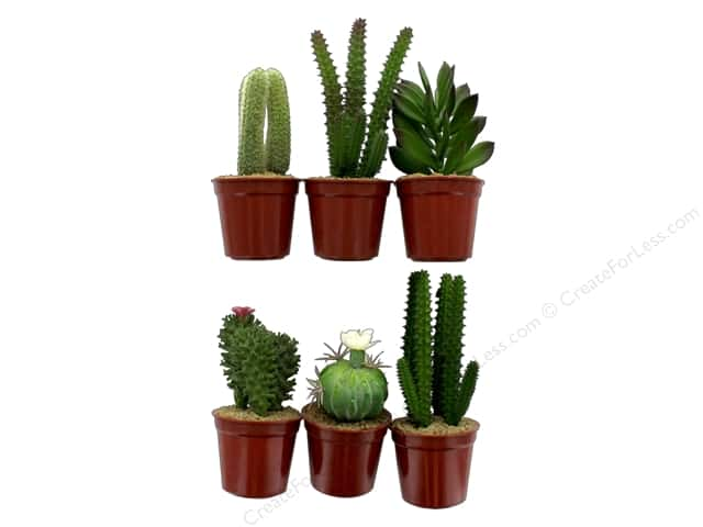 Darice Succulent Mini Cactus Potted 7.5 in. Green Assorted