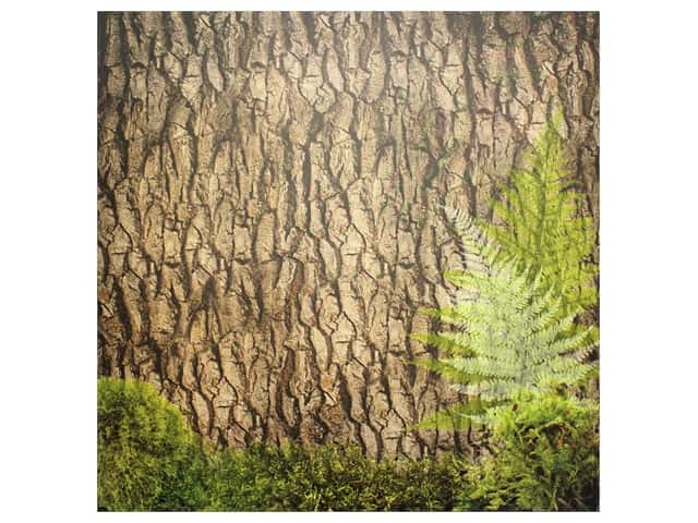 Paper House Paper 12 in. x 12 in. Tree Bark