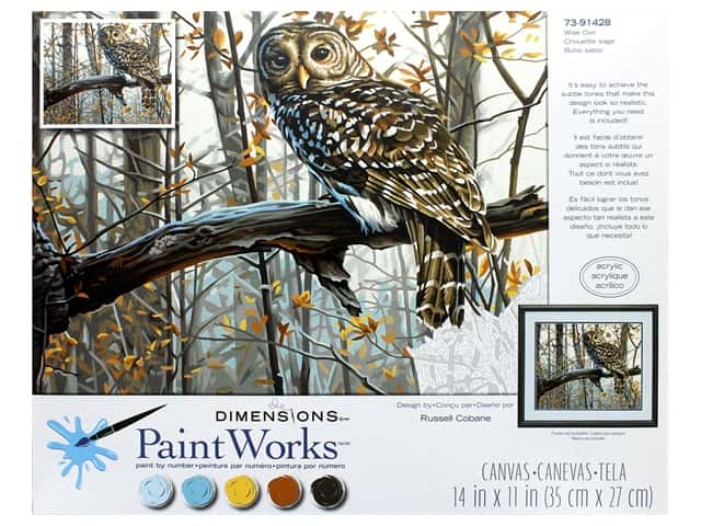 Paint Works Paint By Number Kit 14 in. x 11 in. Wise Owl