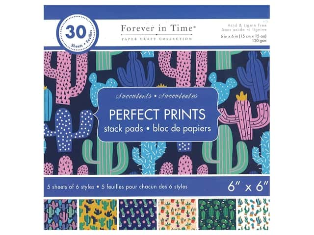Multicraft Stack Pad 6 in. x 6 in. Succulents