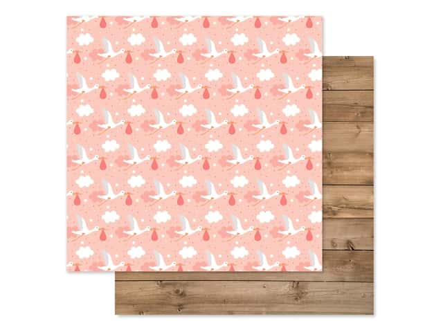 Echo Park Baby Girl Collection Paper 12 in. x 12 in. Little One