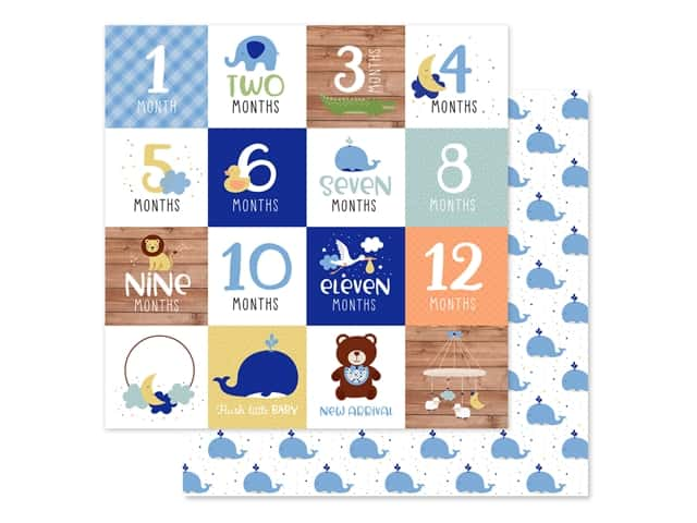 "Echo Park Collection Baby Boy Paper 12""x 12"" Milestone Cards"
