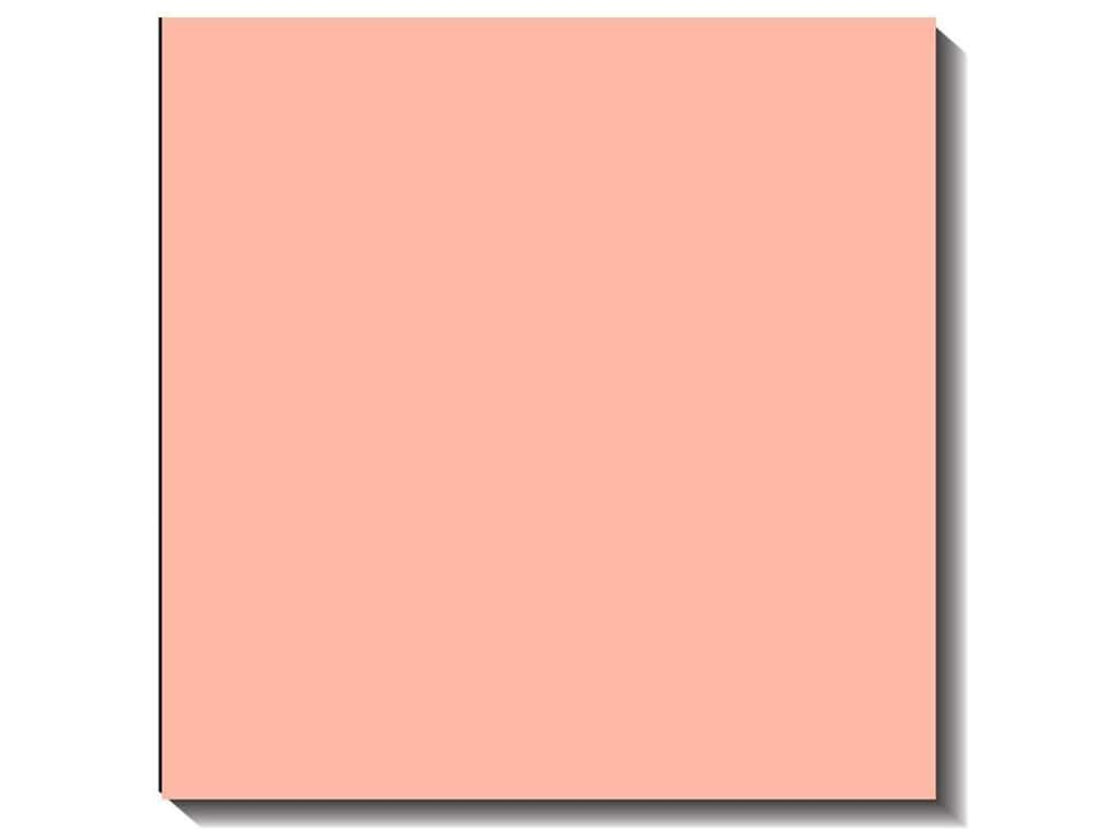 Bazzill Cardstock 12 x 12 in. Canvas Blossom (25 sheets)