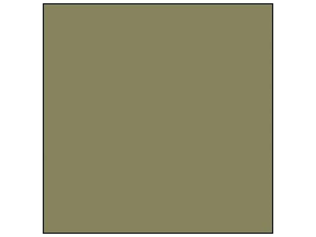 ColorMates Cardstock 12 in. x 12 in. Smooth Cypress (25 sheets)