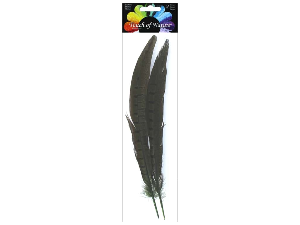 Midwest Design Pheasant Feather 2 pc. 10 - 12 in. Dark Olive