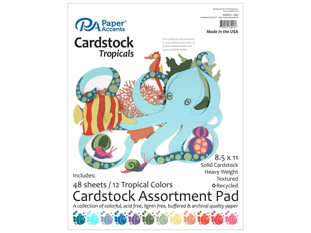Paper Accents 8 1/2 x 11 in. Cardstock Pad 48 pc. Tropical