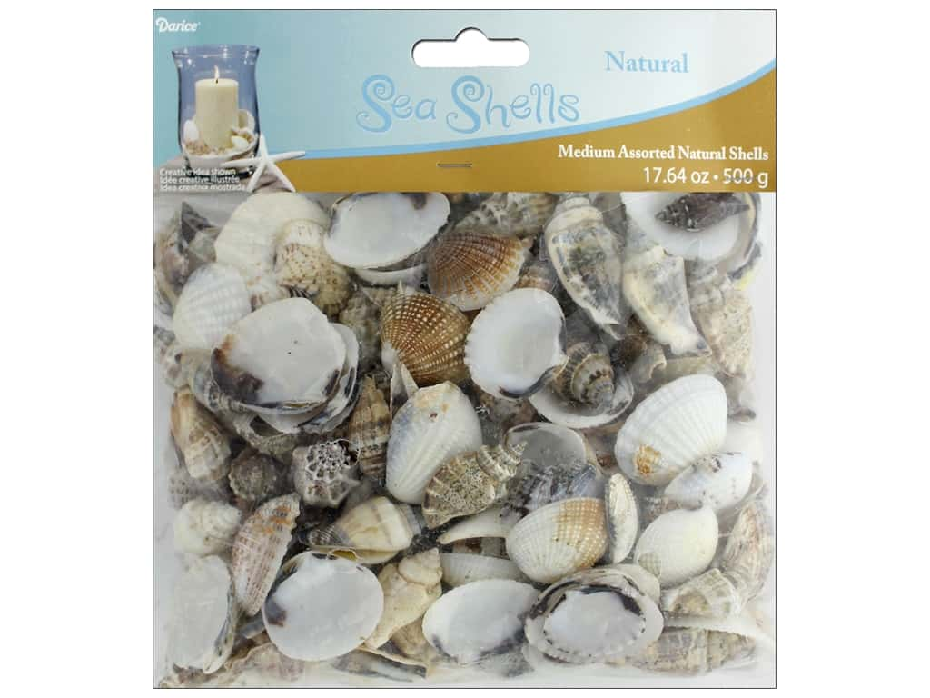 Darice Seashells Medium Assorted 17.64 oz