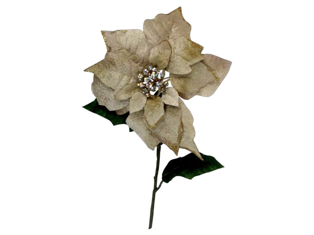 Sierra Pacific Stem Poinsettia With Jeweled Center Gold Edges Cream